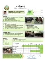 cattle-farm-final