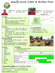 demofarm_cattle