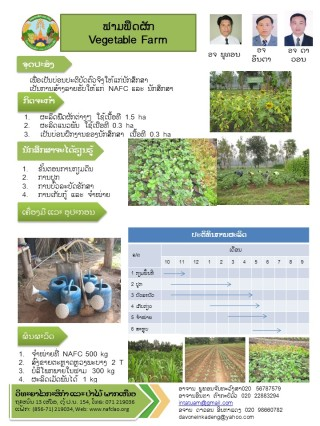 demofarm_vegetable