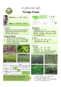 forage-crop-final