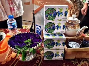 The winning business idea, a delicious purple tea made from the flower of the butterfly pea